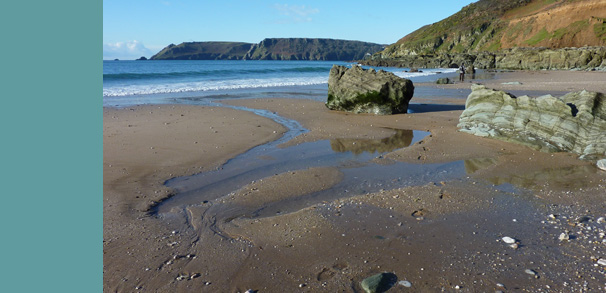 Sandy beach in the South Hams
