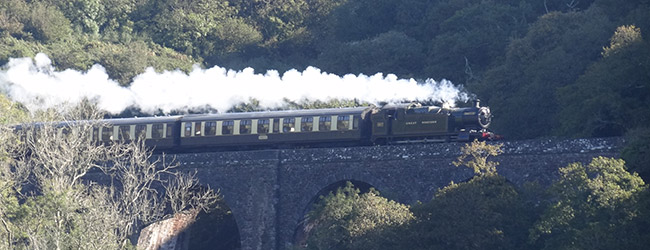 The Dartmouth to Paignton Steam Train